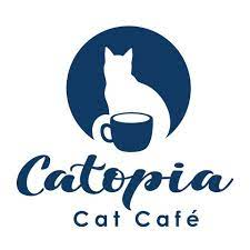 The Catopia Cafe Experience